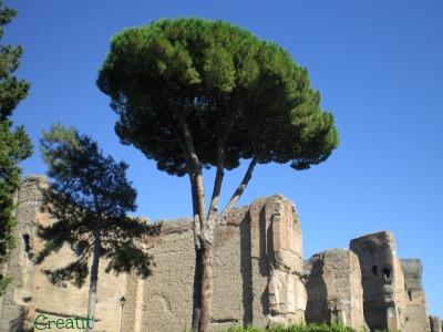 Rome Thermes de Caracalla