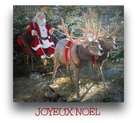 Joyeux Noël 2014